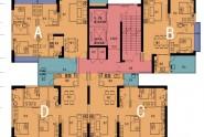 楼栋平面图