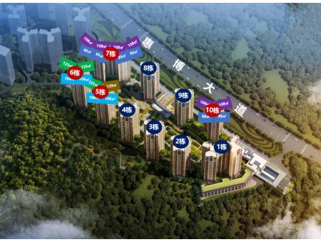 中洲半岛城邦规划图